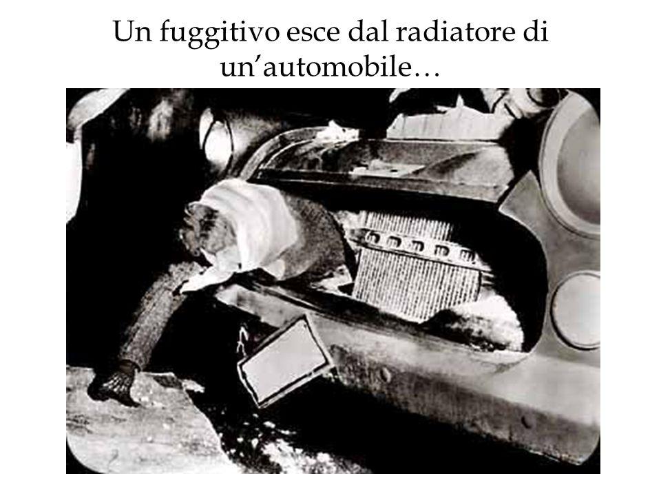 Un fuggitivo esce dal radiatore di un'automobile…