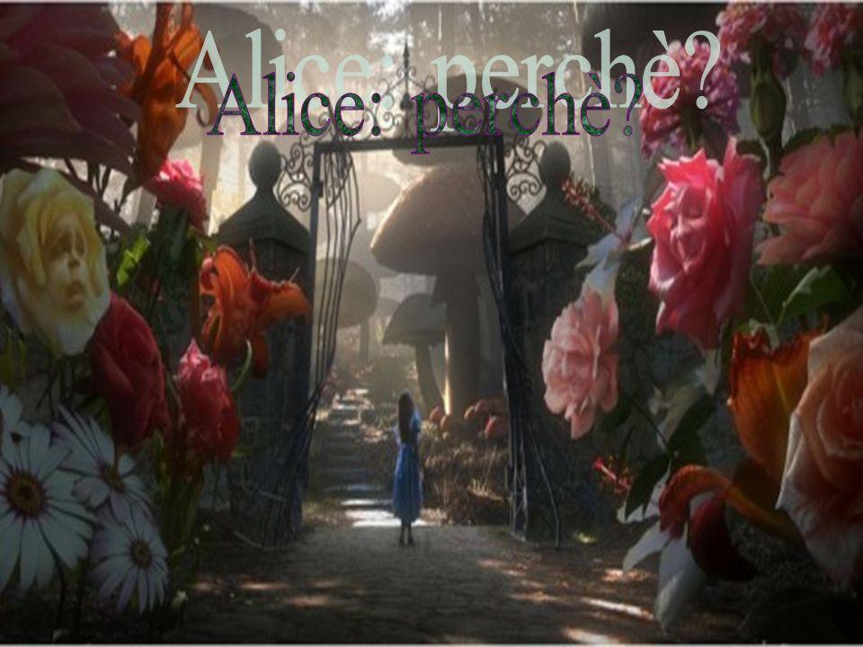 Alice: perchè