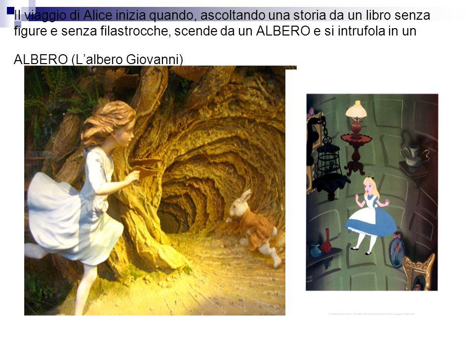 Il viaggio di Alice inizia quando, ascoltando una storia da un libro senza figure e senza filastrocche, scende da un ALBERO e si intrufola in un ALBERO (L'albero Giovanni)