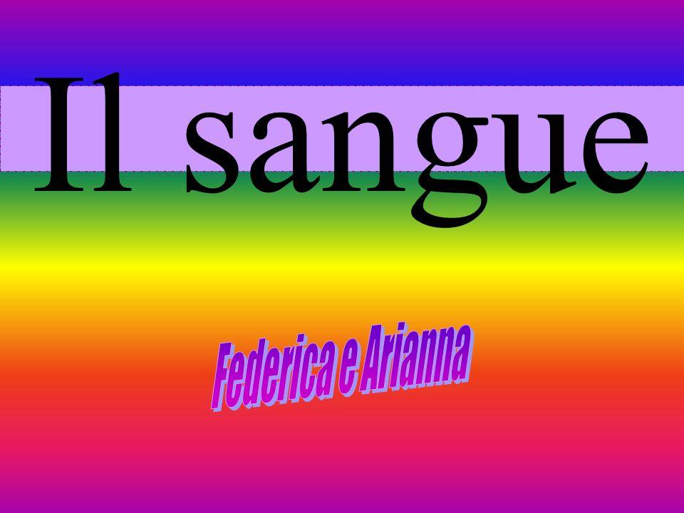 Il sangue Federica e Arianna