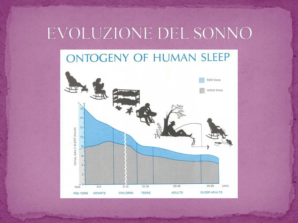 EVOLUZIONE DEL SONNO