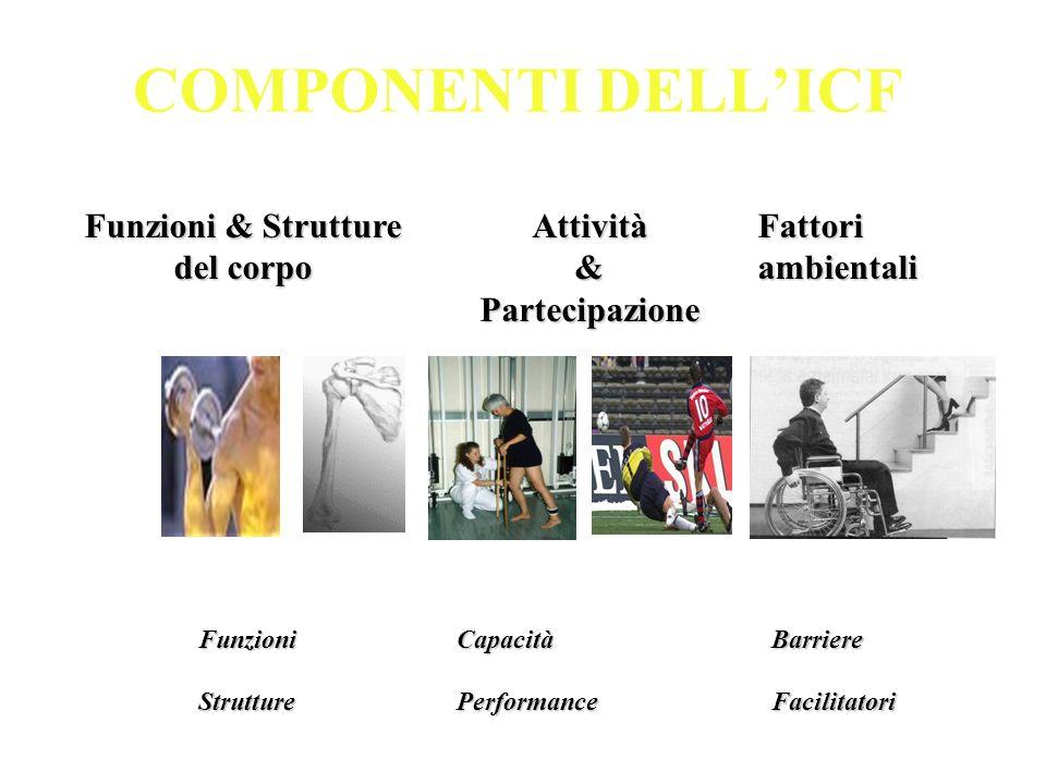 COMPONENTI DELL'ICF Funzioni & Strutture del corpo Attività &