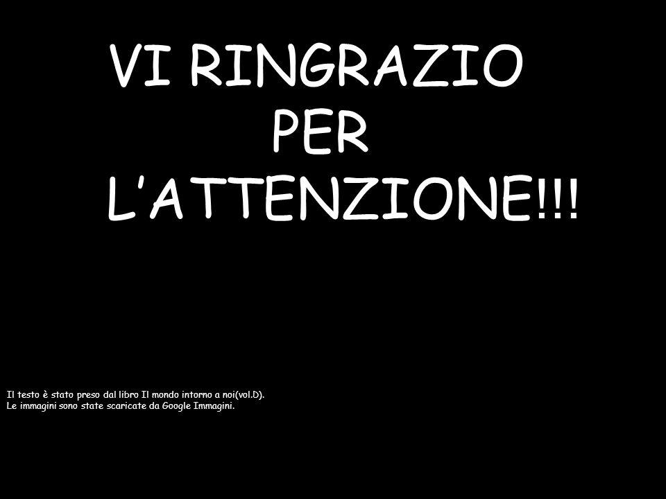 VI RINGRAZIO PER L'ATTENZIONE!!!