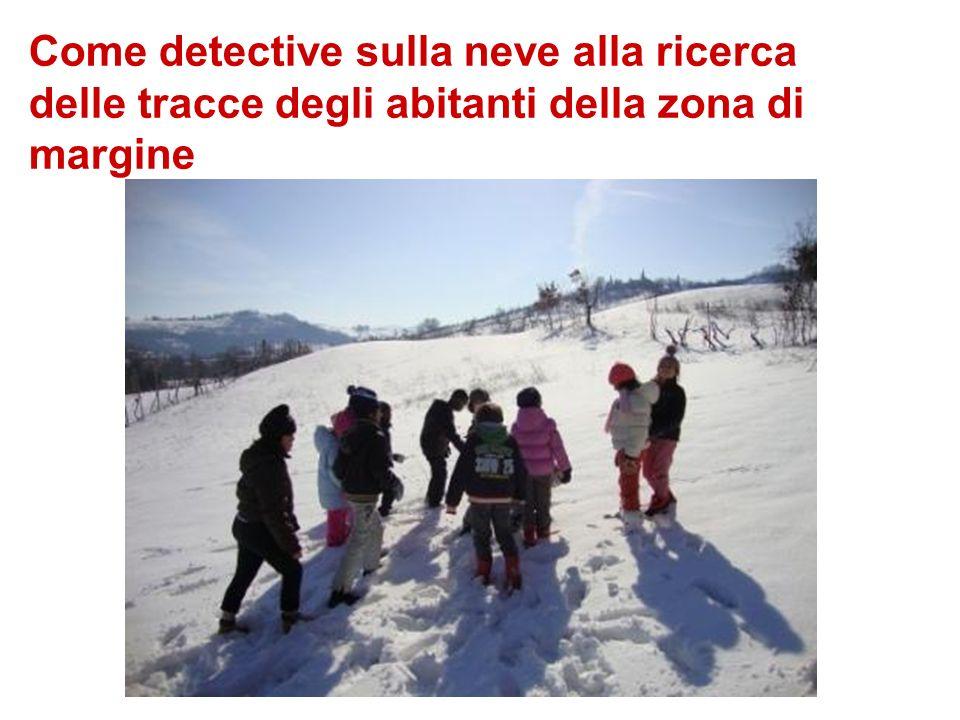 Come detective sulla neve alla ricerca