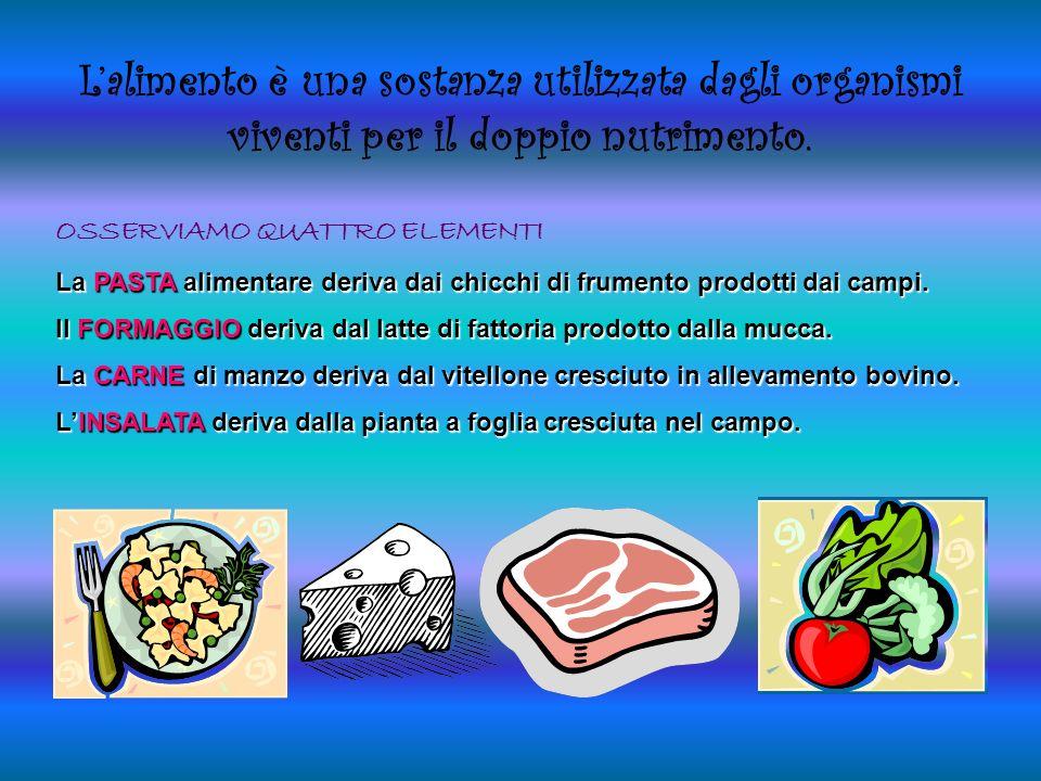 L'alimento è una sostanza utilizzata dagli organismi viventi per il doppio nutrimento.