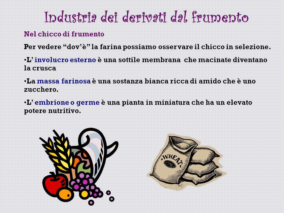Industria dei derivati dal frumento
