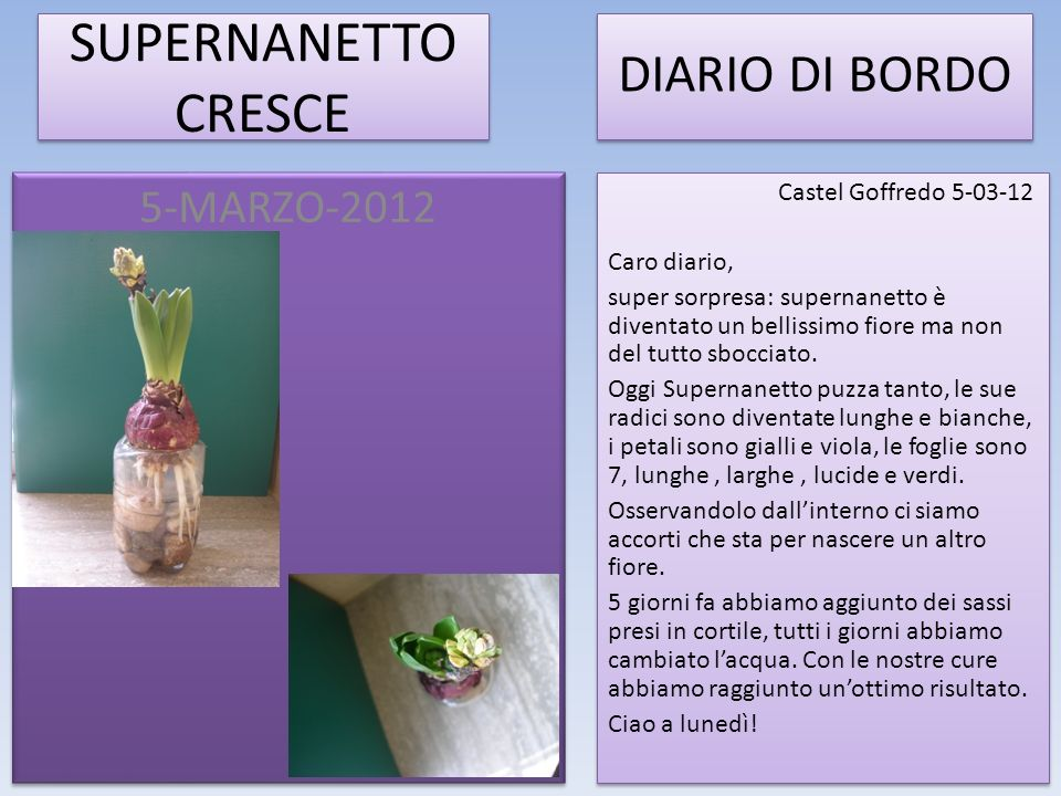 SUPERNANETTO CRESCE DIARIO DI BORDO 5-MARZO-2012