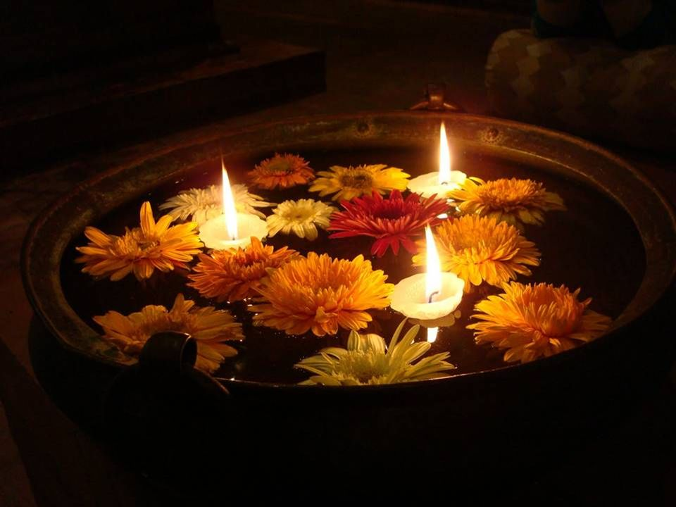 È più importante impedire ad un animale di soffrire, piuttosto che restare seduti a contemplare i mali dell universo pregando in compagnia dei sacerdoti. (Gautama Buddha)