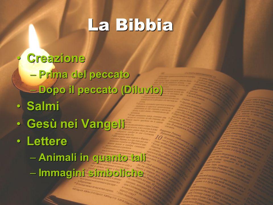 La Bibbia La Bibbia Creazione Salmi Gesù nei Vangeli Lettere