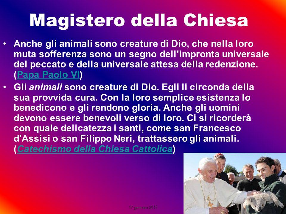 Magistero della Chiesa