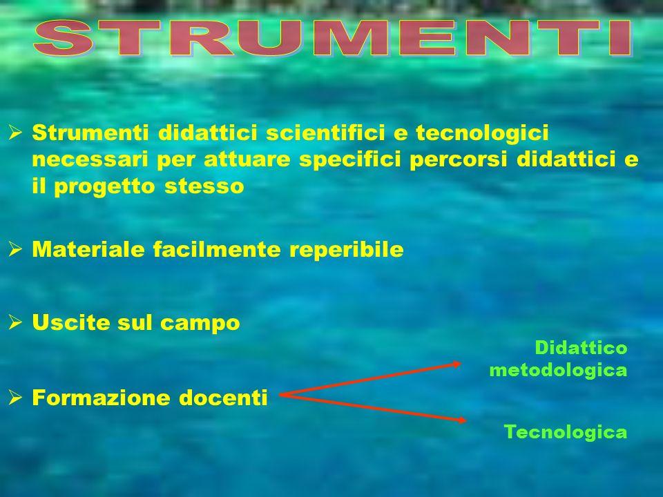 STRUMENTIStrumenti didattici scientifici e tecnologici necessari per attuare specifici percorsi didattici e il progetto stesso.