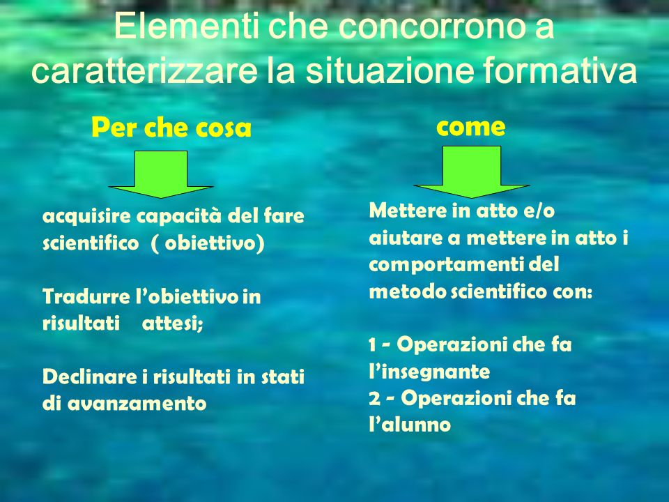 Elementi che concorrono a caratterizzare la situazione formativa