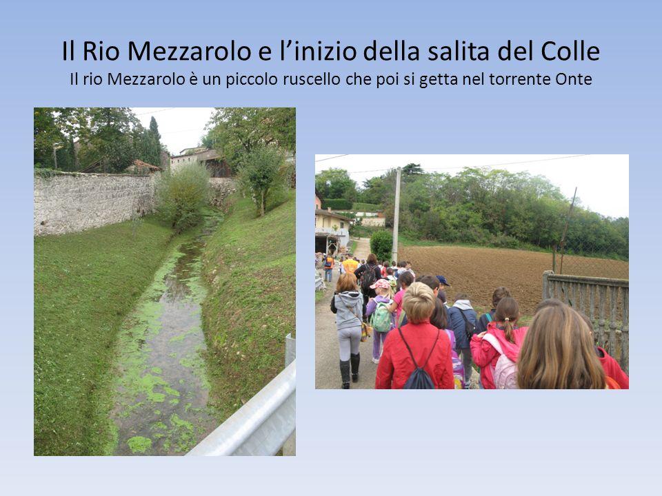 Il Rio Mezzarolo e l'inizio della salita del Colle Il rio Mezzarolo è un piccolo ruscello che poi si getta nel torrente Onte