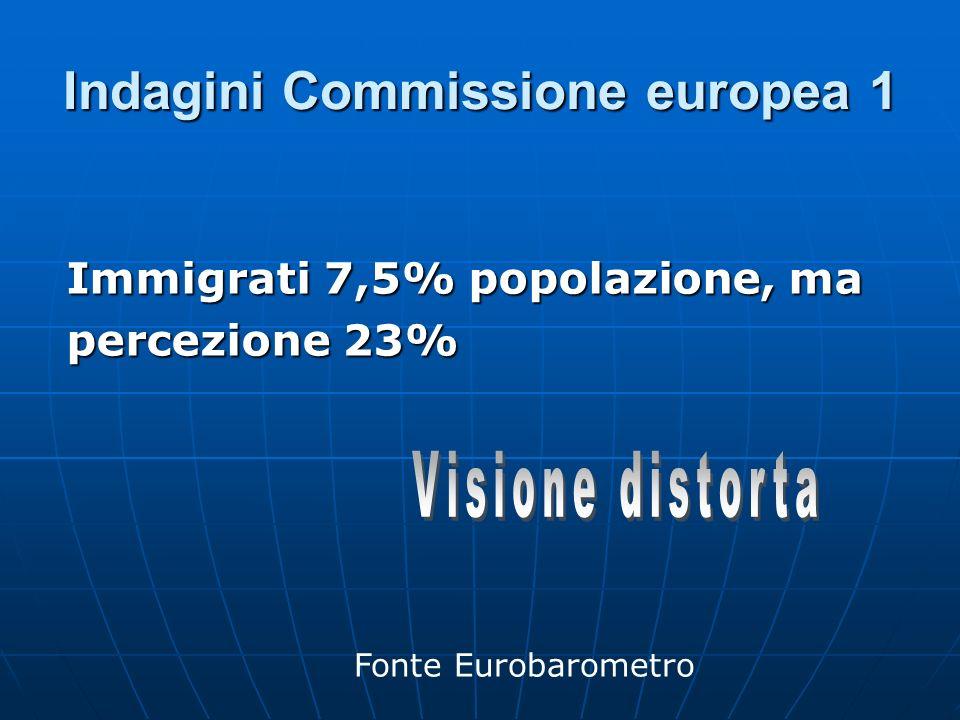 Indagini Commissione europea 1