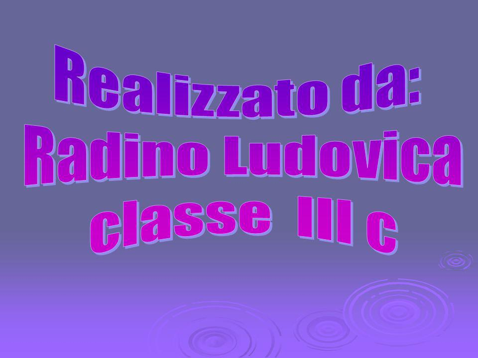 Realizzato da: Radino Ludovica classe III c