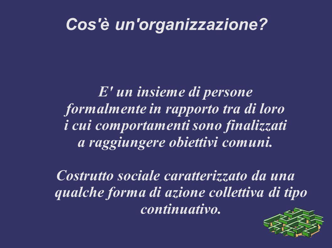 Cos è un organizzazione