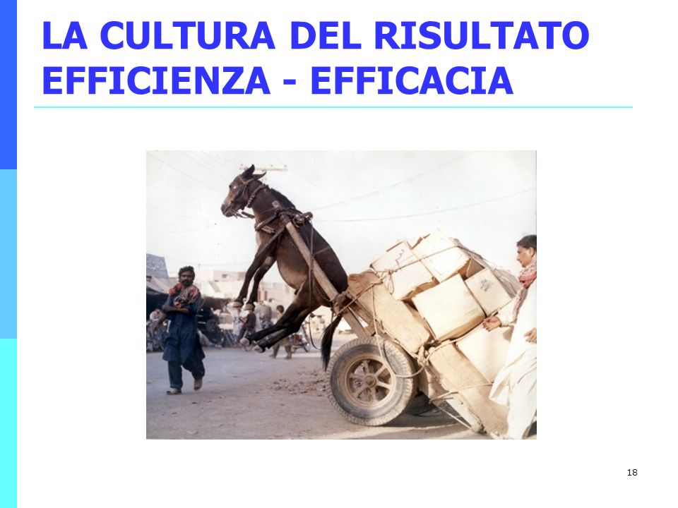 LA CULTURA DEL RISULTATO EFFICIENZA - EFFICACIA