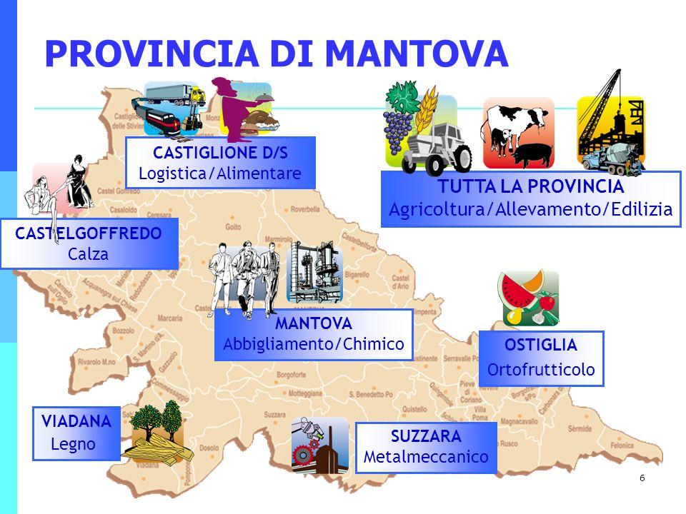 PROVINCIA DI MANTOVA CASTIGLIONE D/S Logistica/Alimentare. TUTTA LA PROVINCIA Agricoltura/Allevamento/Edilizia.