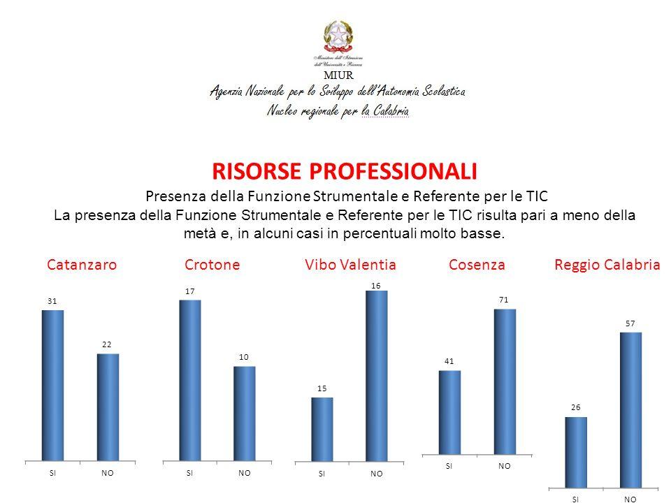 RISORSE PROFESSIONALI Presenza della Funzione Strumentale e Referente per le TIC