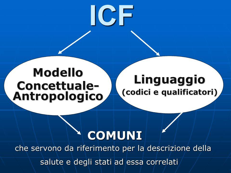 Concettuale- Antropologico Linguaggio (codici e qualificatori)