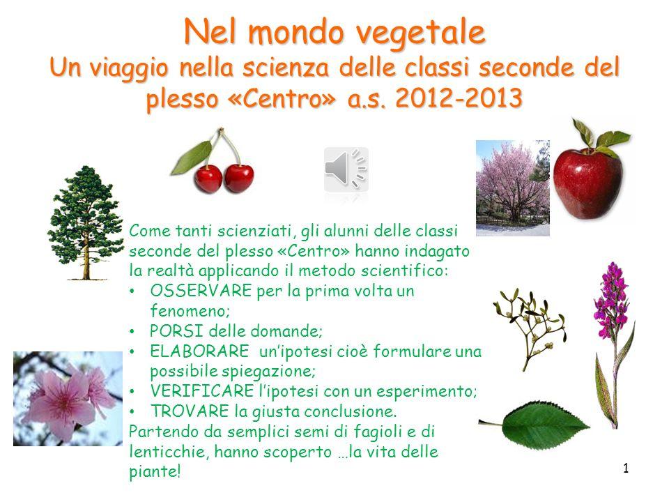Nel mondo vegetale Un viaggio nella scienza delle classi seconde del plesso «Centro» a.s. 2012-2013