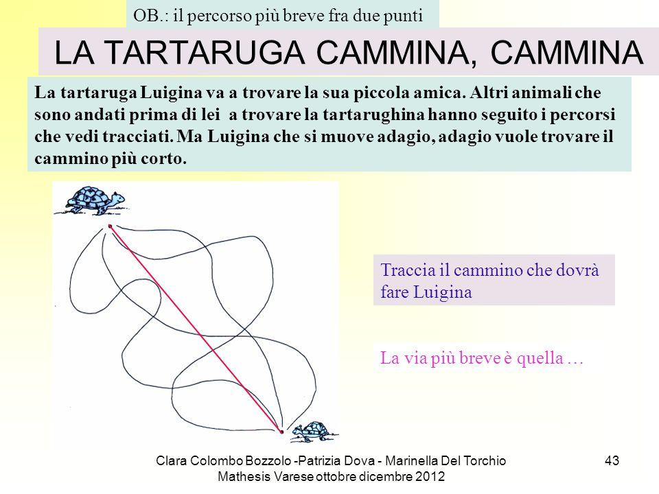 LA TARTARUGA CAMMINA, CAMMINA