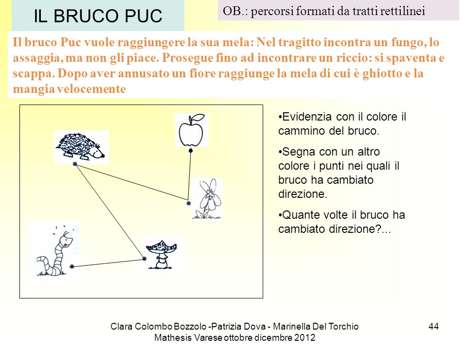 IL BRUCO PUC OB.: percorsi formati da tratti rettilinei