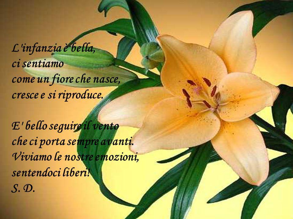 L infanzia è bella, ci sentiamo. come un fiore che nasce, cresce e si riproduce. E bello seguire il vento.
