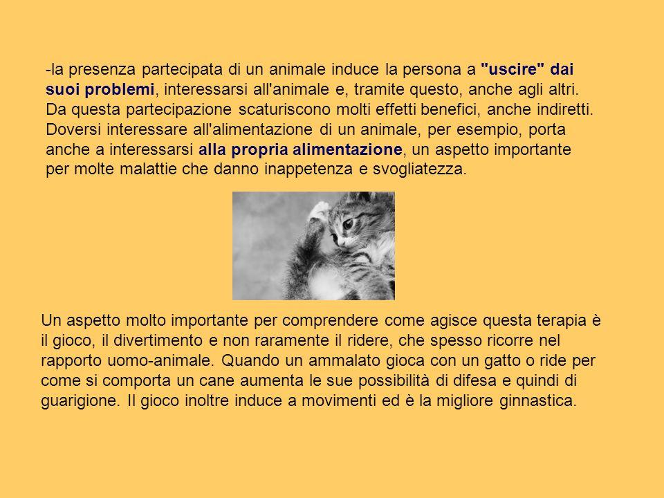 -la presenza partecipata di un animale induce la persona a uscire dai suoi problemi, interessarsi all animale e, tramite questo, anche agli altri.
