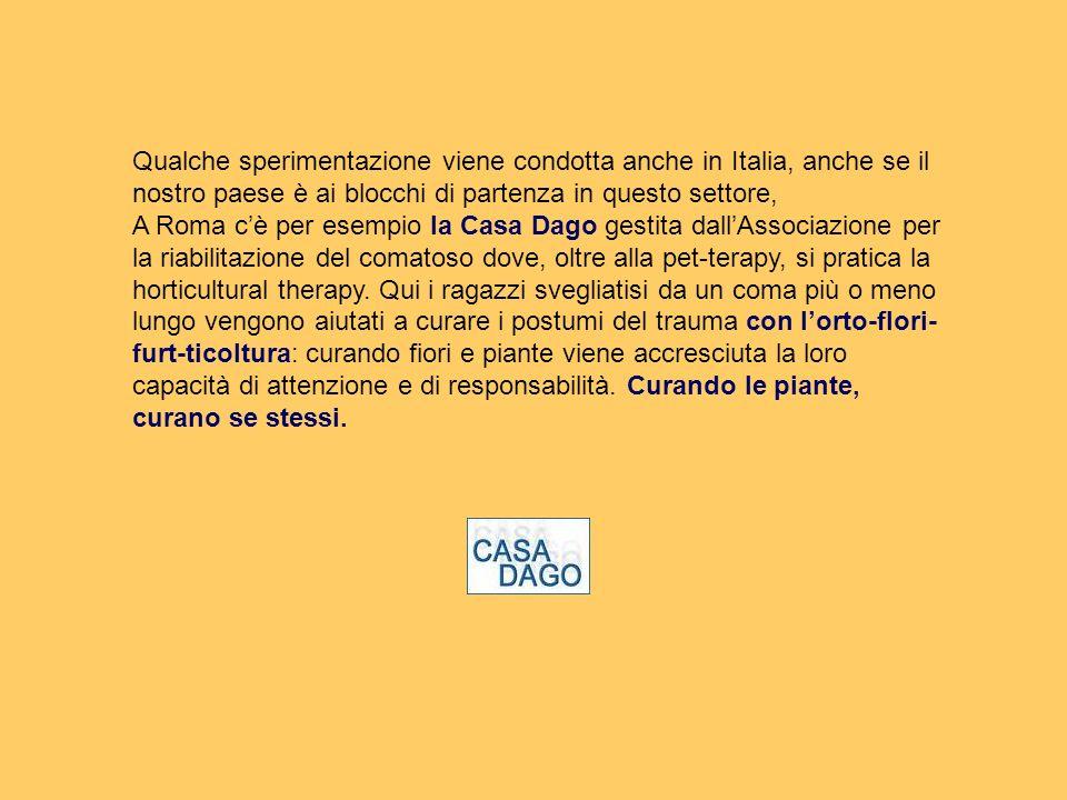 Qualche sperimentazione viene condotta anche in Italia, anche se il nostro paese è ai blocchi di partenza in questo settore,