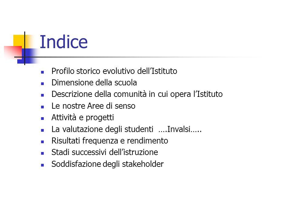 Indice Profilo storico evolutivo dell'Istituto Dimensione della scuola