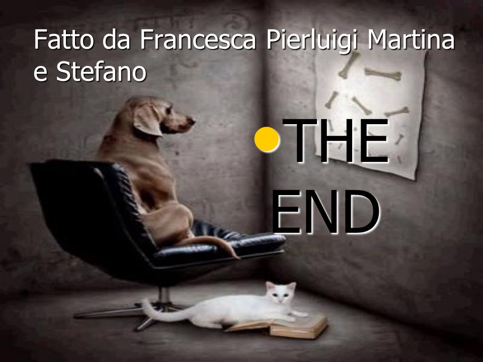 Fatto da Francesca Pierluigi Martina e Stefano