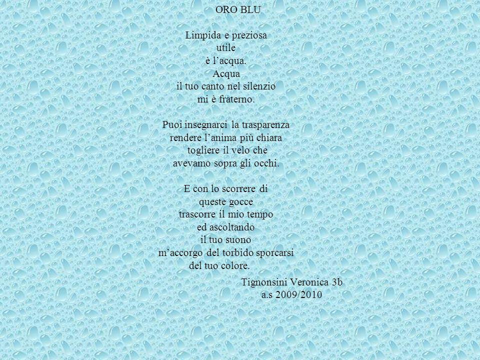 Tignonsini Veronica 3b a.s 2009/2010