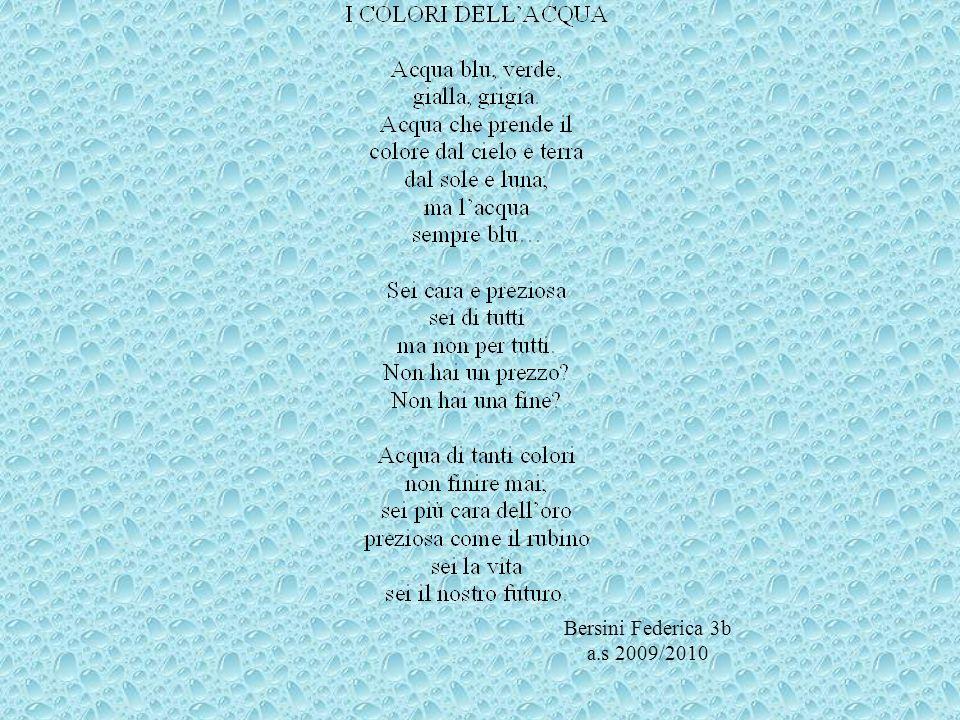 Bersini Federica 3b a.s 2009/2010