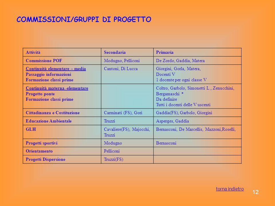 COMMISSIONI/GRUPPI DI PROGETTO