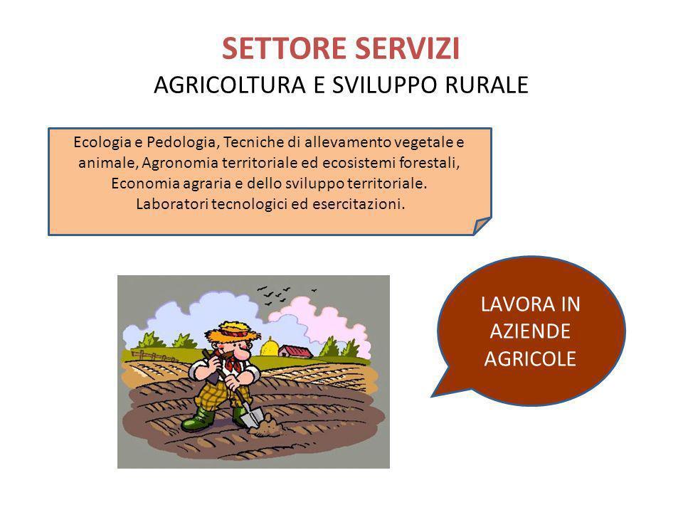 SETTORE SERVIZI AGRICOLTURA E SVILUPPO RURALE
