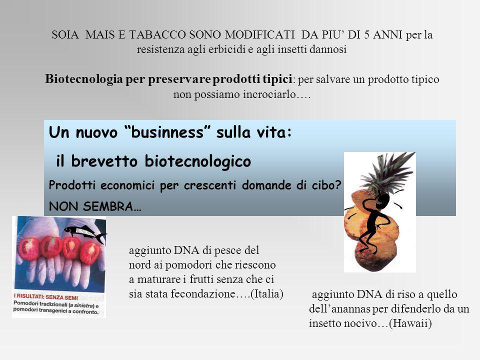 Un nuovo businness sulla vita: il brevetto biotecnologico