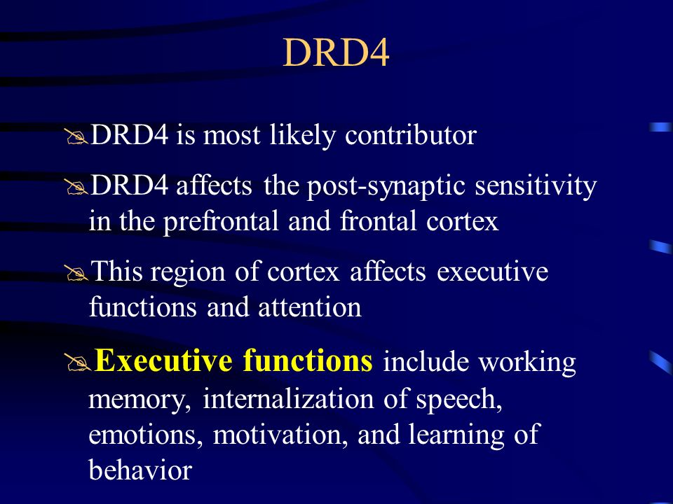 DRD4 DRD4 is most likely contributor. DRD4 affects the post-synaptic sensitivity in the prefrontal and frontal cortex.