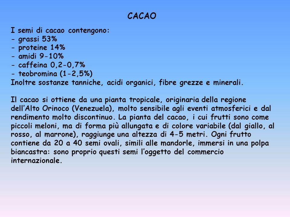 CACAO I semi di cacao contengono: - grassi 53% - proteine 14%