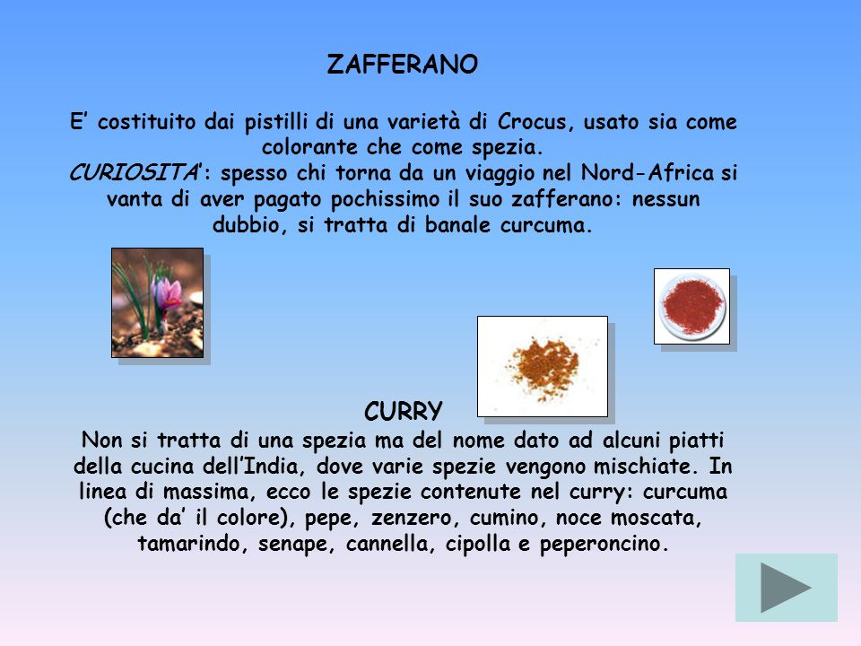 ZAFFERANO E' costituito dai pistilli di una varietà di Crocus, usato sia come colorante che come spezia.