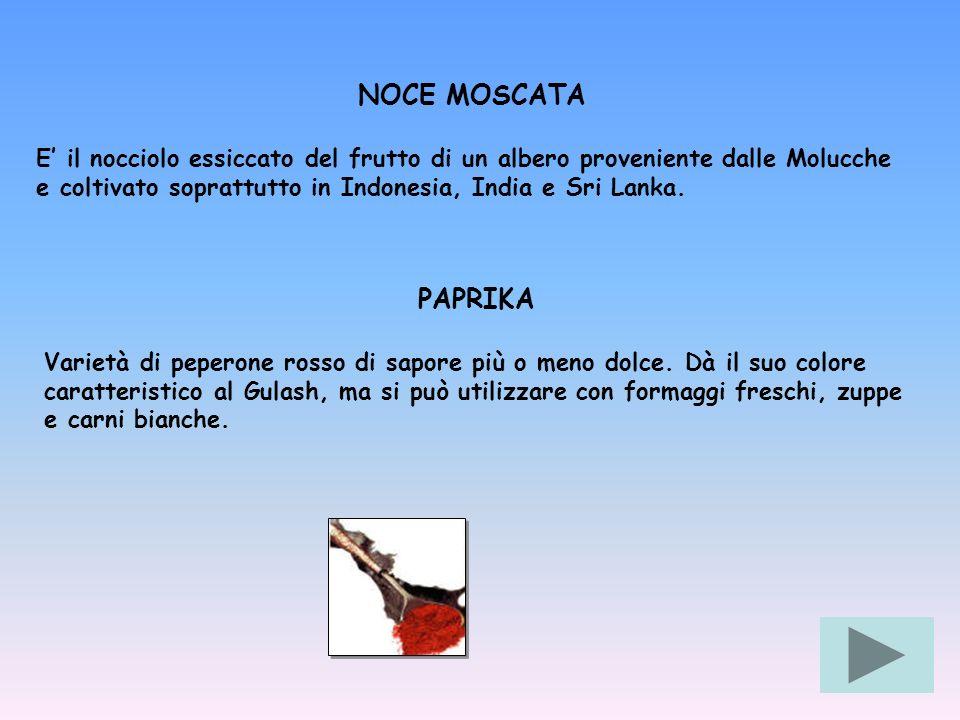 NOCE MOSCATA E' il nocciolo essiccato del frutto di un albero proveniente dalle Molucche e coltivato soprattutto in Indonesia, India e Sri Lanka.