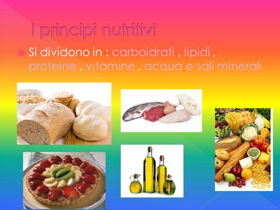 I principi nutritivi Si dividono in : carboidrati , lipidi , proteine , vitamine , acqua e sali minerali.