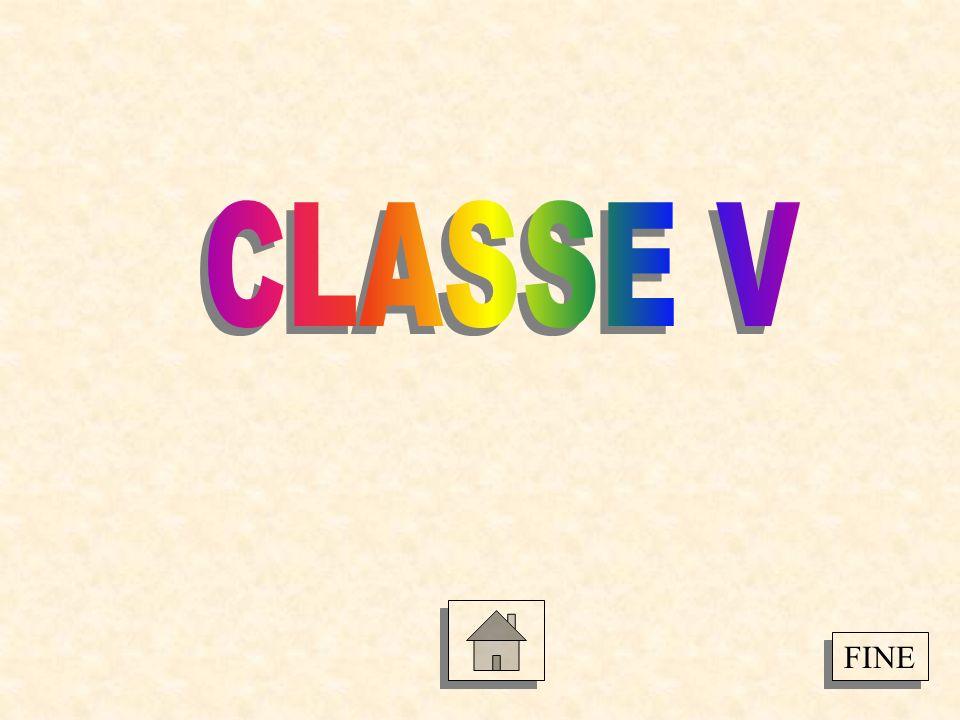 CLASSE V FINE