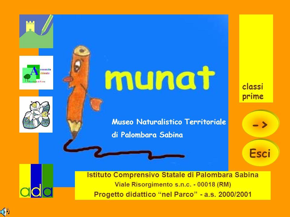 -> Esci classi prime Museo Naturalistico Territoriale