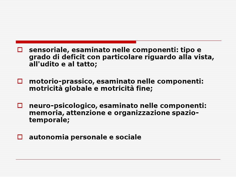 sensoriale, esaminato nelle componenti: tipo e grado di deficit con particolare riguardo alla vista, all udito e al tatto;