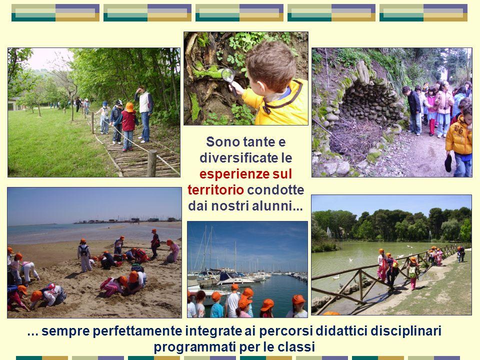 Sono tante e diversificate le esperienze sul territorio condotte dai nostri alunni...