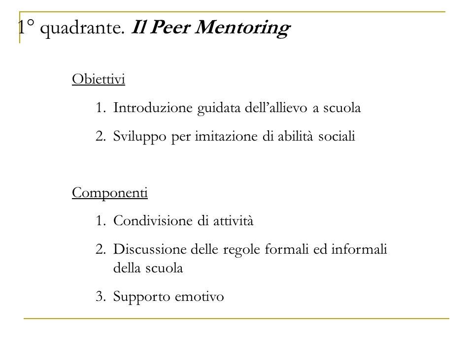 1° quadrante. Il Peer Mentoring
