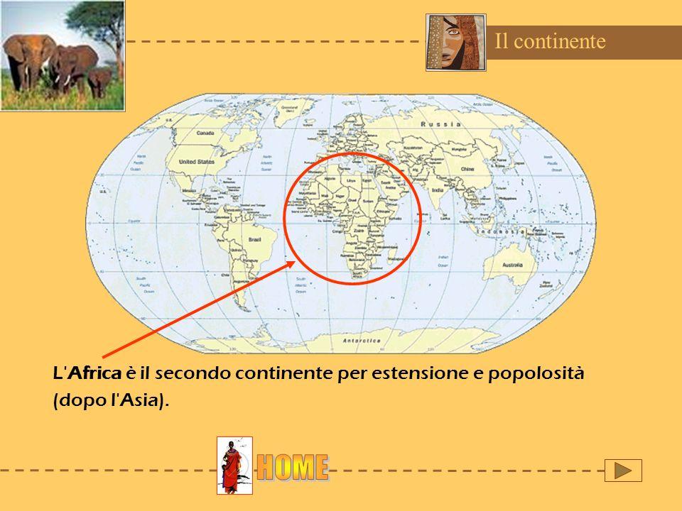 Il continenteL Africa è il secondo continente per estensione e popolosità (dopo l Asia).