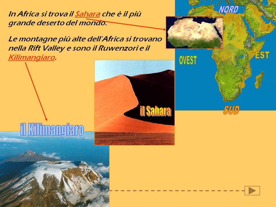 NORD EST OVEST il Sahara SUD il Kilimangiaro