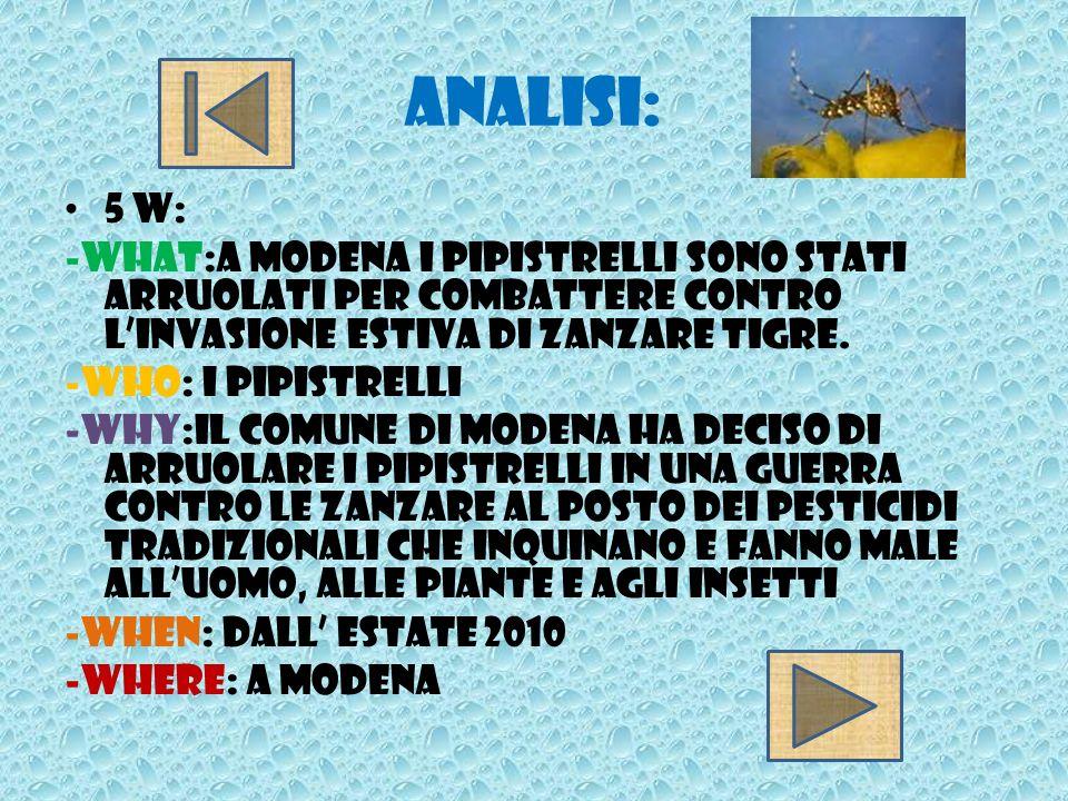 Analisi:5 w: -What:A Modena i pipistrelli sono stati arruolati per combattere contro l'invasione estiva di zanzare tigre.